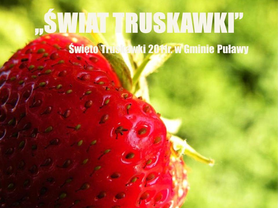 """Kliknij, aby edytować styl wzorca podtytułu 6/25/11 """"ŚWIAT TRUSKAWKI"""" Święto Truskawki 2011r. w Gminie Puławy"""