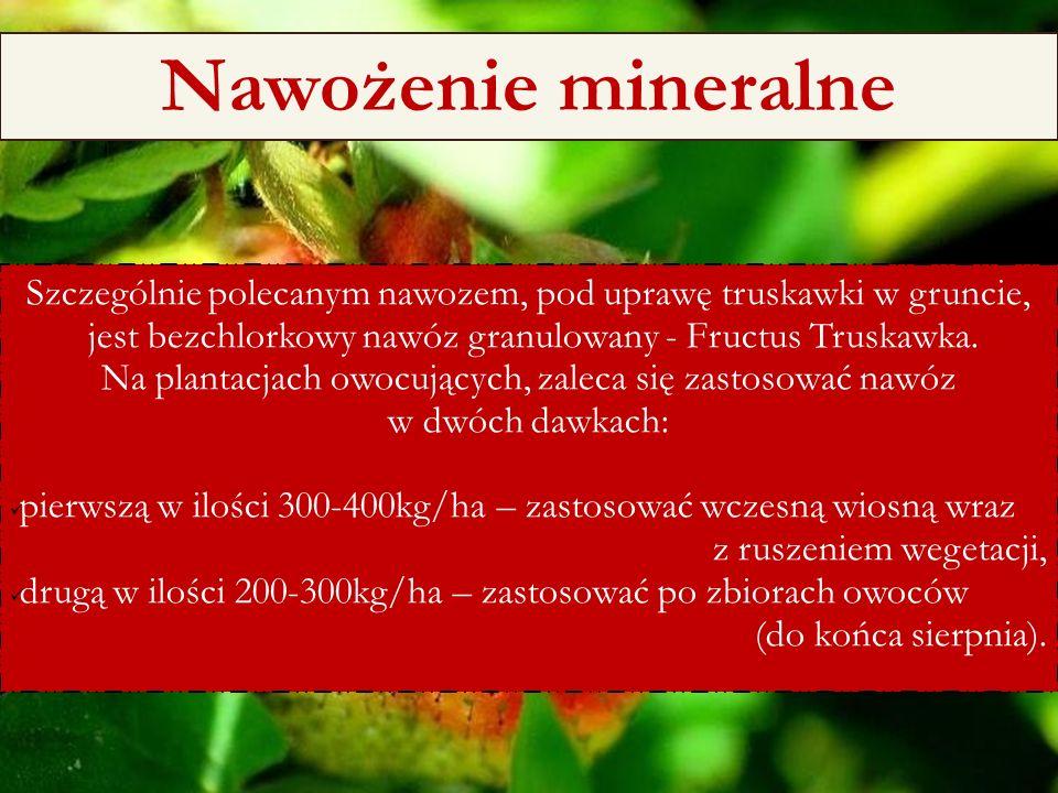 6/25/11 Nawożenie mineralne Szczególnie polecanym nawozem, pod uprawę truskawki w gruncie, jest bezchlorkowy nawóz granulowany - Fructus Truskawka. Na