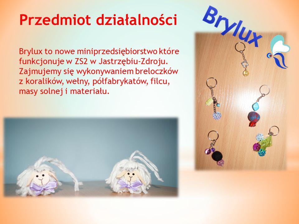 Przedmiot działalności Brylux to nowe miniprzedsiębiorstwo które funkcjonuje w ZS2 w Jastrzębiu-Zdroju.