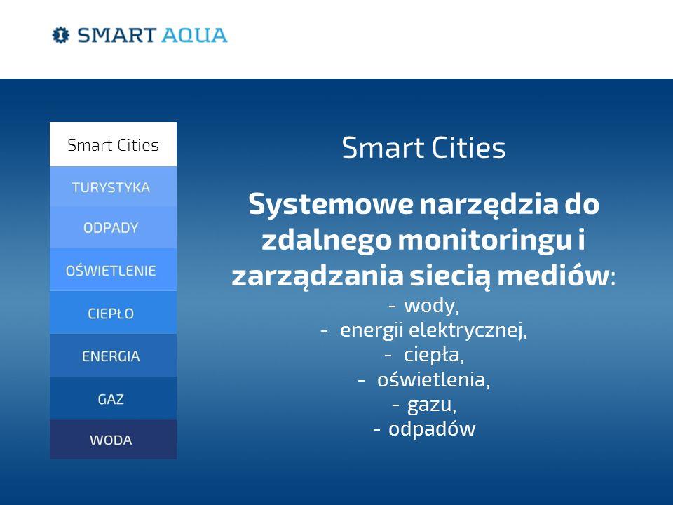 Smart Cities Systemowe narzędzia do zdalnego monitoringu i zarządzania siecią mediów :  wody,  energii elektrycznej,  ciepła,  oświetlenia,  gazu,  odpadów Smart Cities