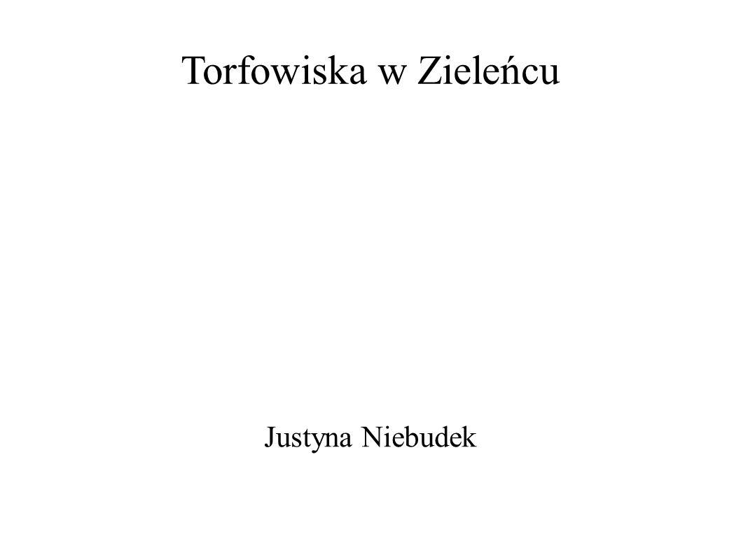 Torfowiska w Zieleńcu Justyna Niebudek