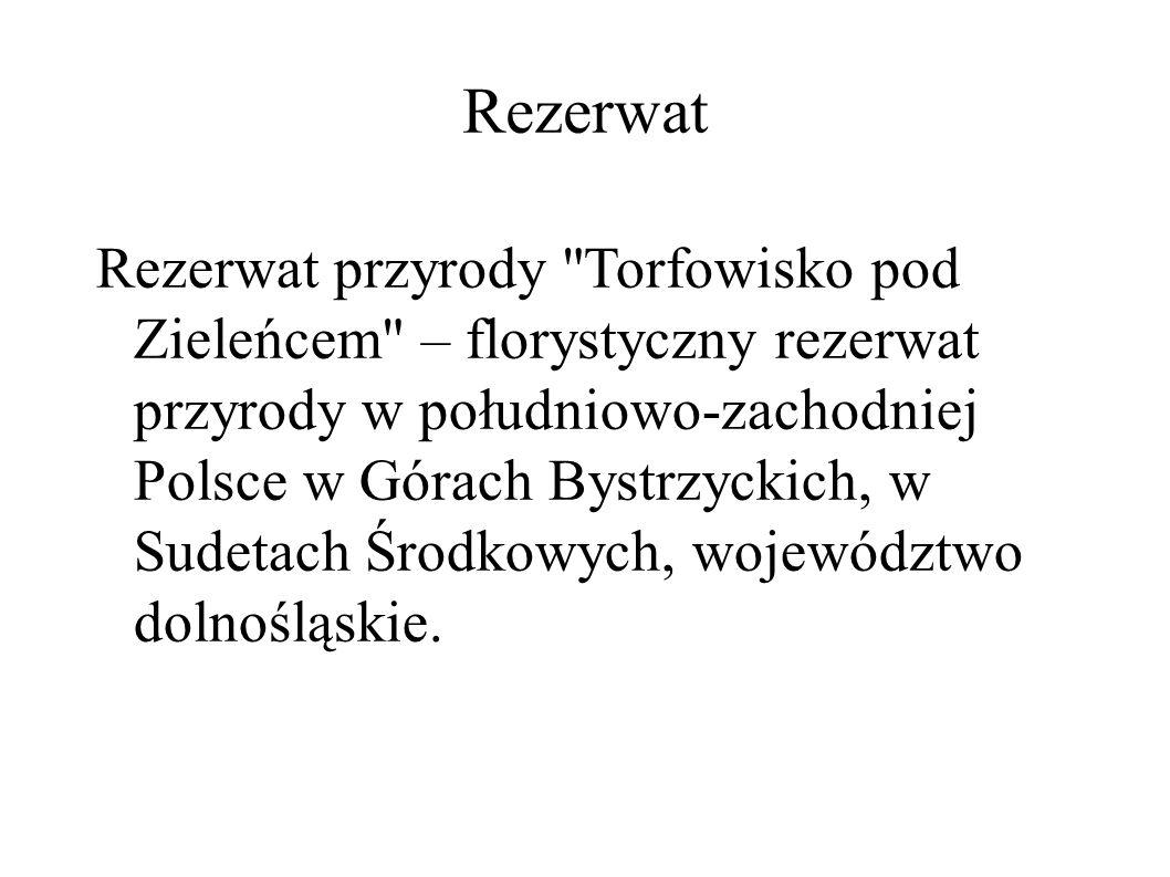 Rezerwat Rezerwat przyrody Torfowisko pod Zieleńcem – florystyczny rezerwat przyrody w południowo-zachodniej Polsce w Górach Bystrzyckich, w Sudetach Środkowych, województwo dolnośląskie.