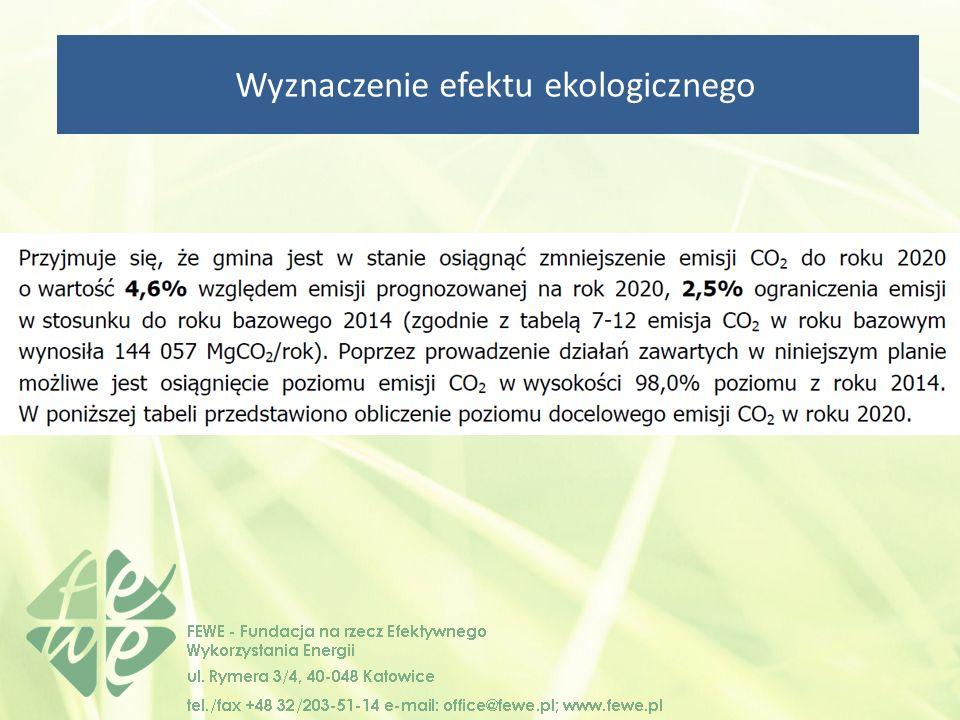 Wyznaczenie efektu ekologicznego