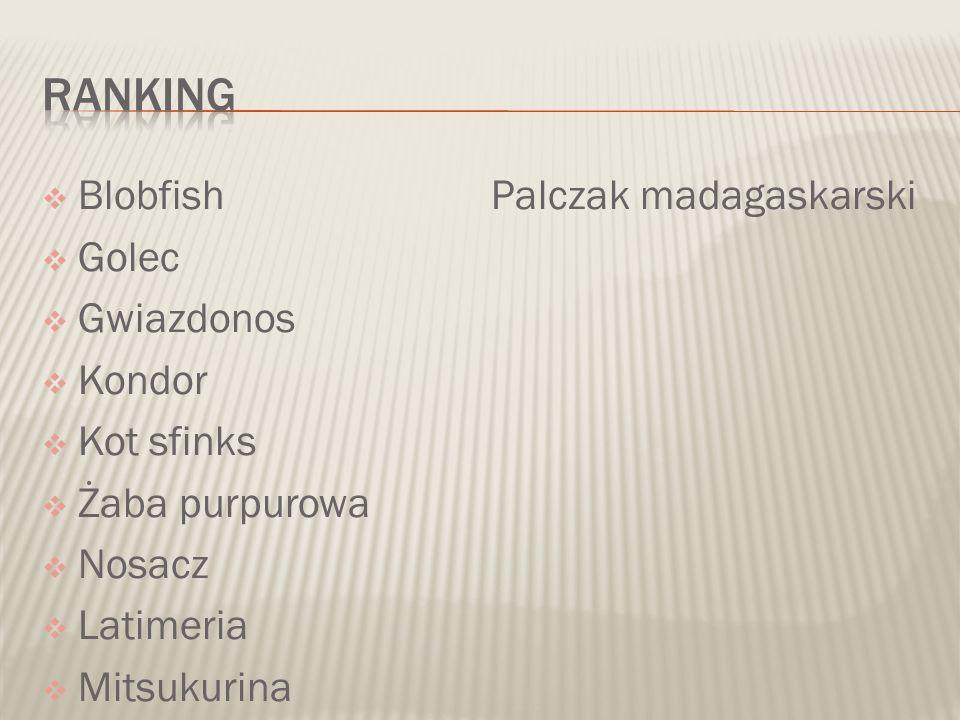  Blobfish Palczak madagaskarski  Golec  Gwiazdonos  Kondor  Kot sfinks  Żaba purpurowa  Nosacz  Latimeria  Mitsukurina