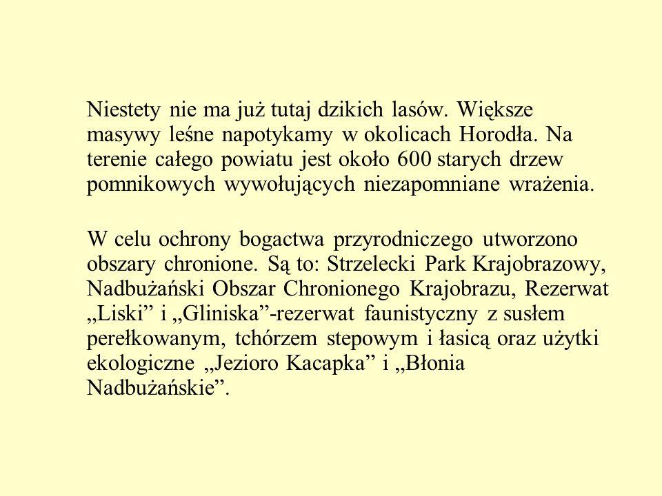 Kryłów Miejscowość najbardziej wysunięta na wschód pod względem warowni zamkowych.