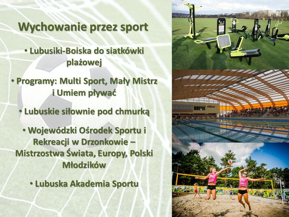 Wychowanie przez sport Lubusiki-Boiska do siatkówki plażowej Lubusiki-Boiska do siatkówki plażowej Programy: Multi Sport, Mały Mistrz Programy: Multi