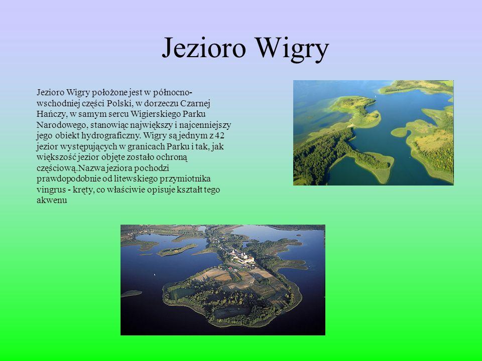 Jezioro Wigry Jezioro Wigry położone jest w północno- wschodniej części Polski, w dorzeczu Czarnej Hańczy, w samym sercu Wigierskiego Parku Narodowego, stanowiąc największy i najcenniejszy jego obiekt hydrograficzny.