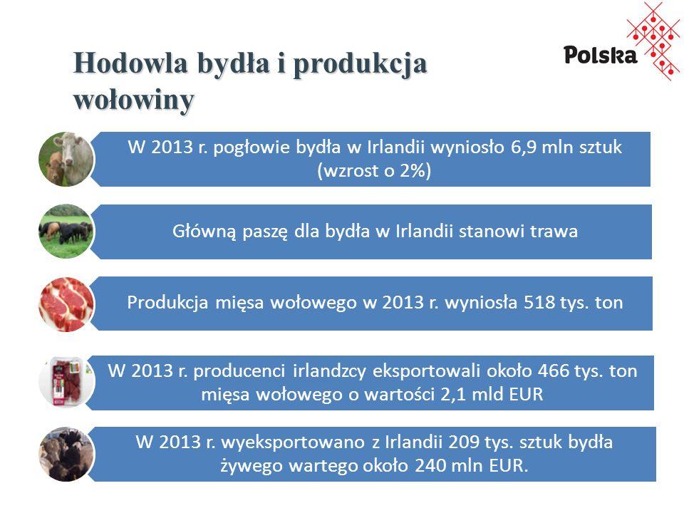Hodowla bydła i produkcja wołowiny W 2013 r.