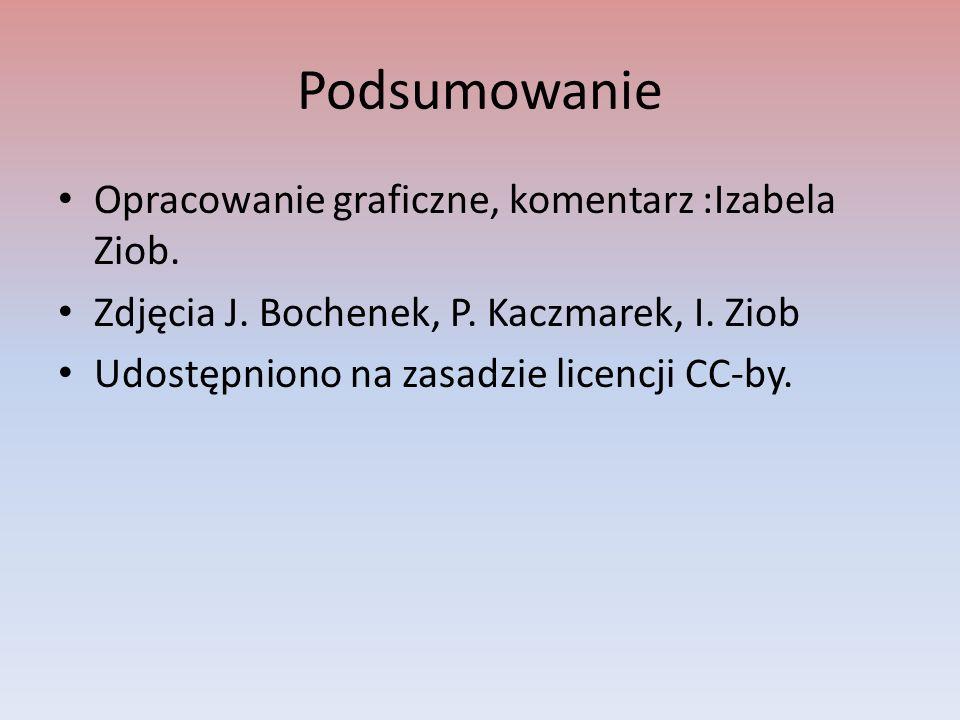 Podsumowanie Opracowanie graficzne, komentarz :Izabela Ziob. Zdjęcia J. Bochenek, P. Kaczmarek, I. Ziob Udostępniono na zasadzie licencji CC-by.