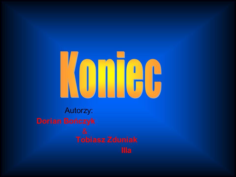 Autorzy: Dorian Bończyk & Tobiasz Zduniak IIIa
