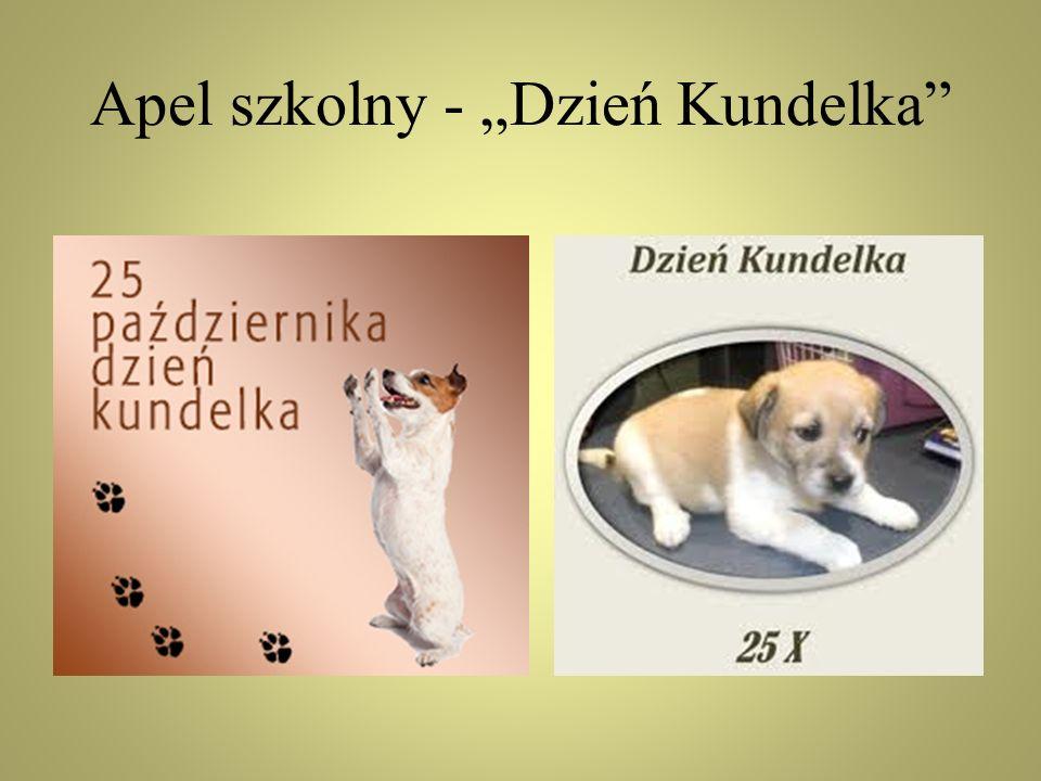 USTAWA O OCHRONIE ZWIERZĄT Zwierzęta domowe Art.9.