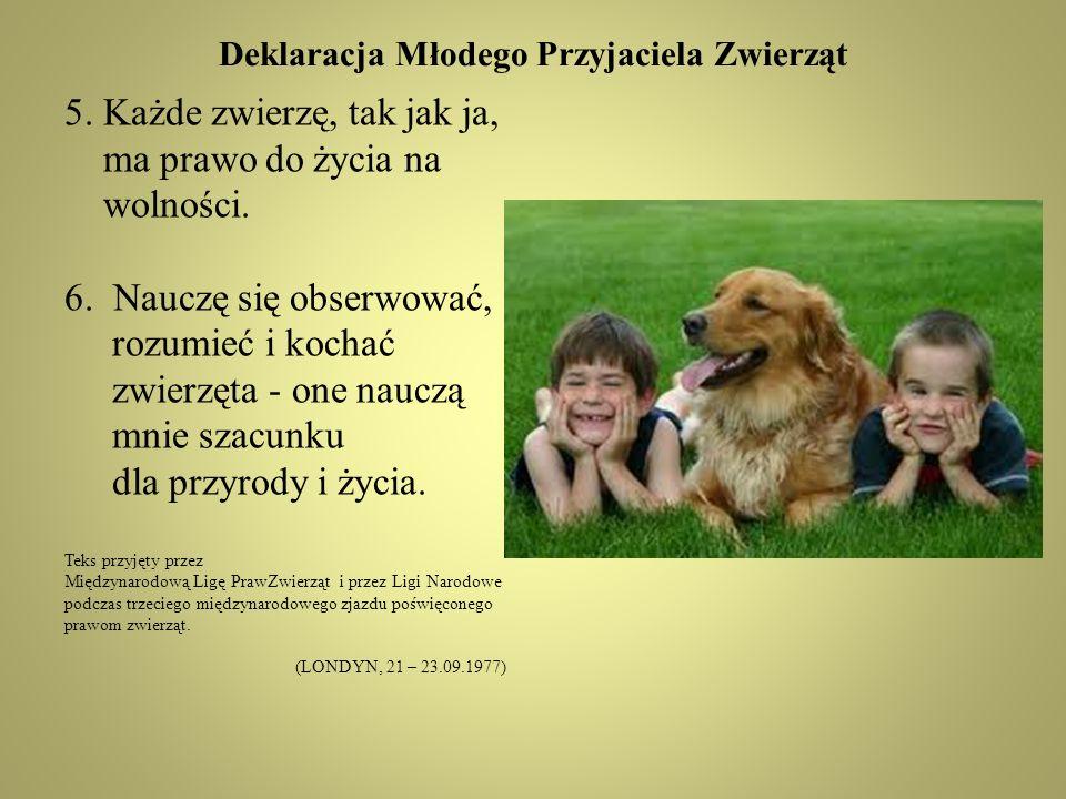 Deklaracja Młodego Przyjaciela Zwierząt 5.