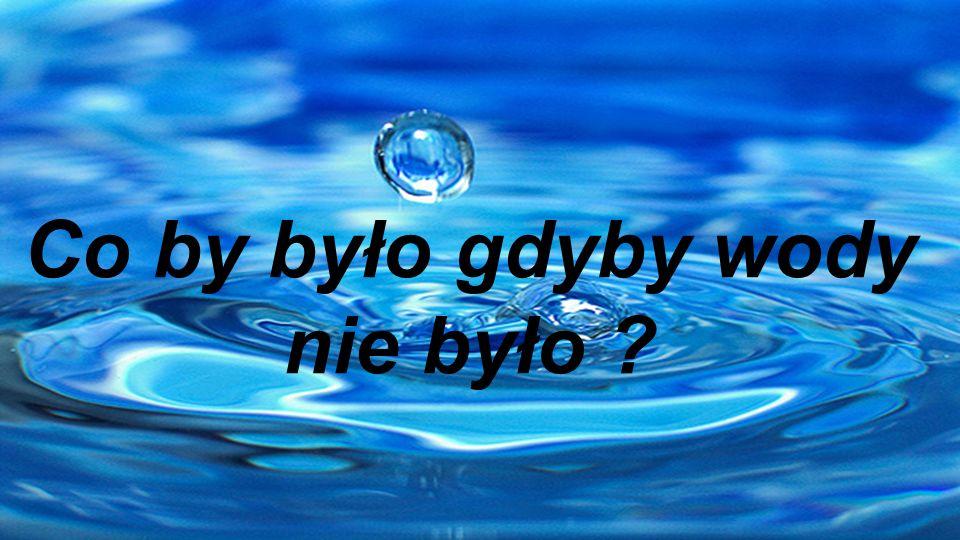 Woda jest źródłem życia wszystkich organizmów żywych.
