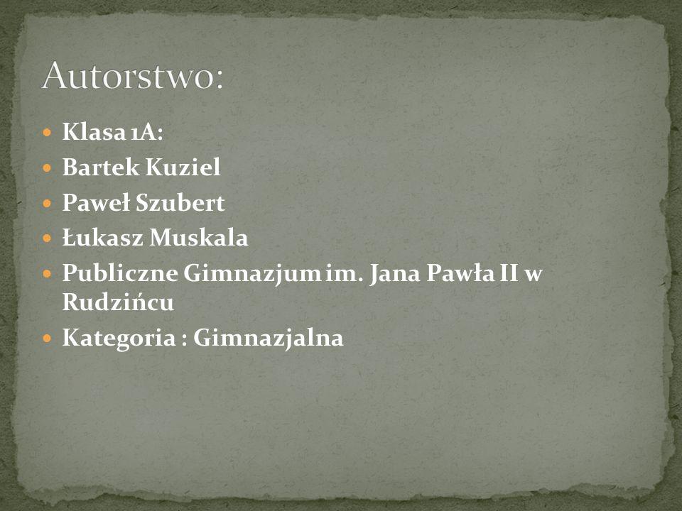 Klasa 1A: Bartek Kuziel Paweł Szubert Łukasz Muskala Publiczne Gimnazjum im. Jana Pawła II w Rudzińcu Kategoria : Gimnazjalna