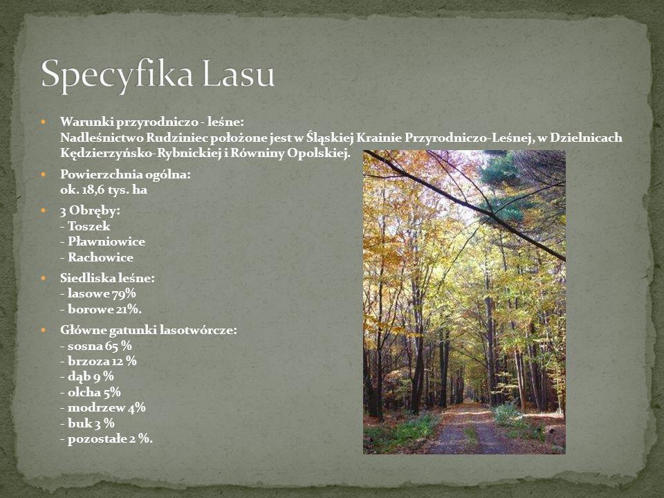 Warunki przyrodniczo - leśne: Nadleśnictwo Rudziniec położone jest w Śląskiej Krainie Przyrodniczo-Leśnej, w Dzielnicach Kędzierzyńsko-Rybnickiej i Ró