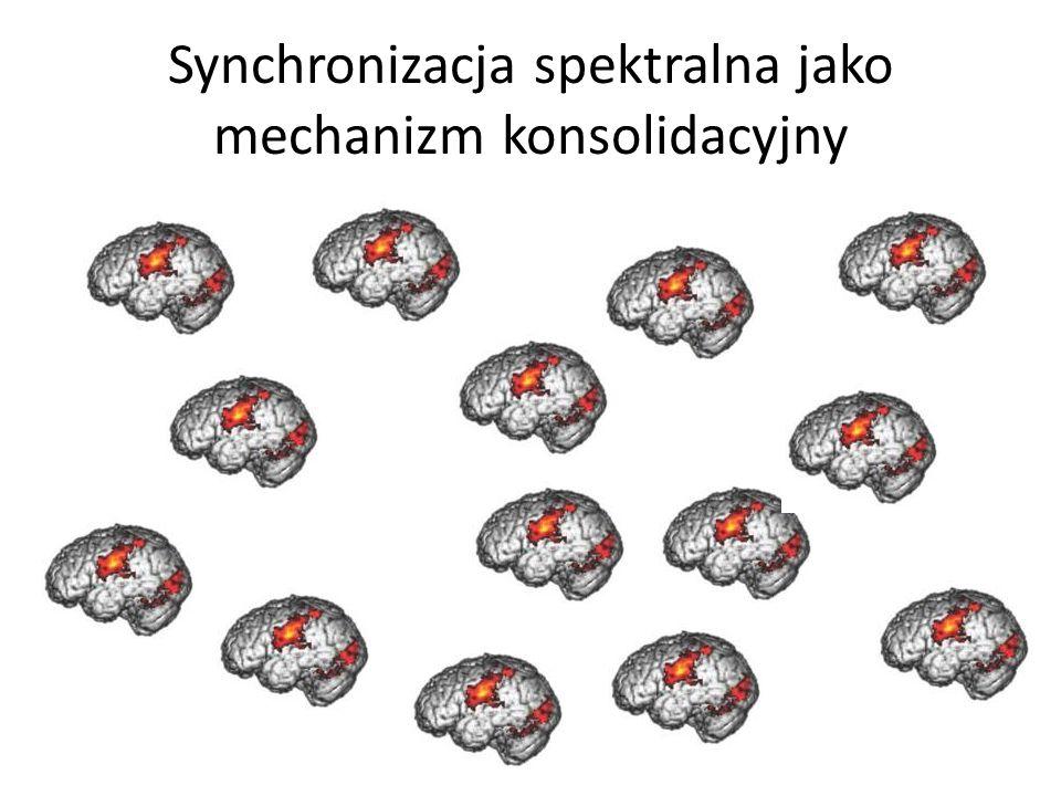 Synchronizacja spektralna jako mechanizm konsolidacyjny