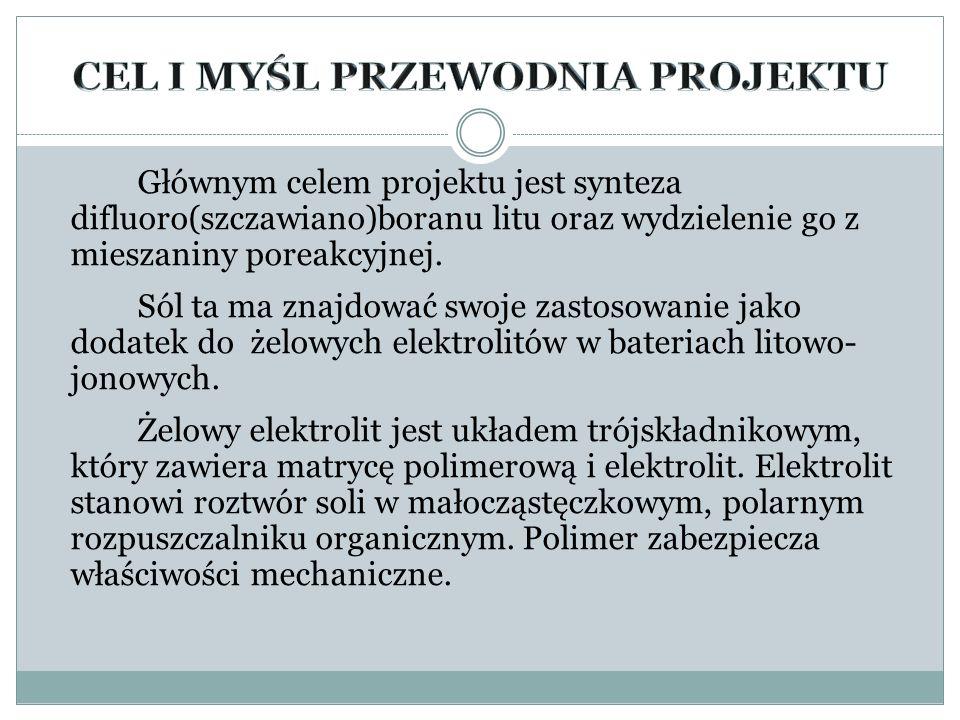 Aleksandra Cupriak V LO im.ks. Józefa Poniatowskiego Projekt realizowany pod opieką dr hab.