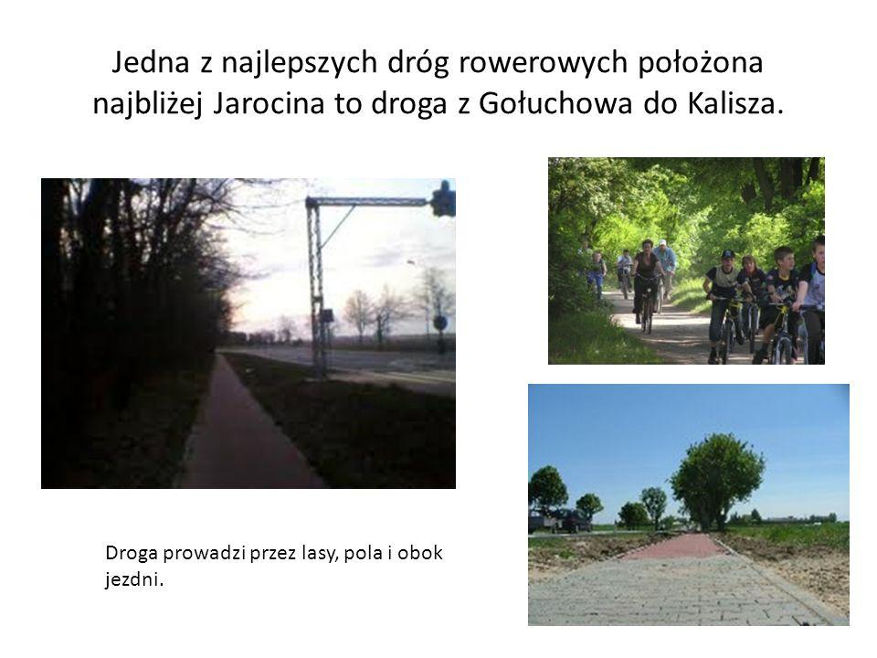 Jedna z najlepszych dróg rowerowych położona najbliżej Jarocina to droga z Gołuchowa do Kalisza.