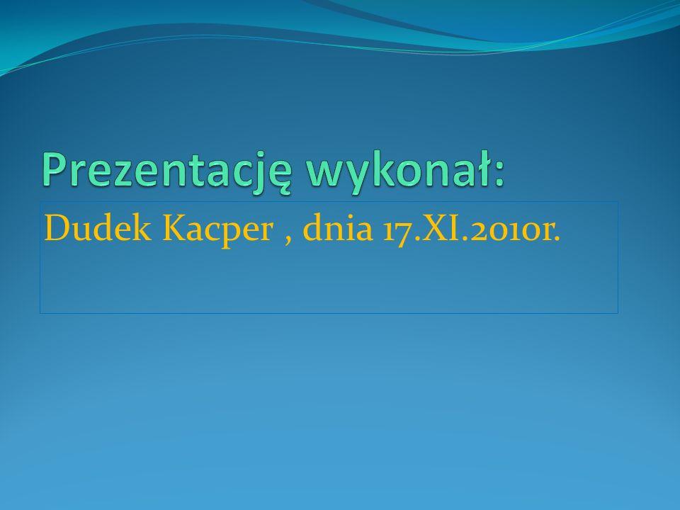 Dudek Kacper, dnia 17.XI.2010r.