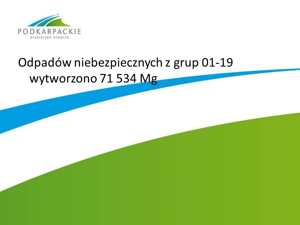 Odpadów niebezpiecznych z grup 01-19 wytworzono 71 534 Mg