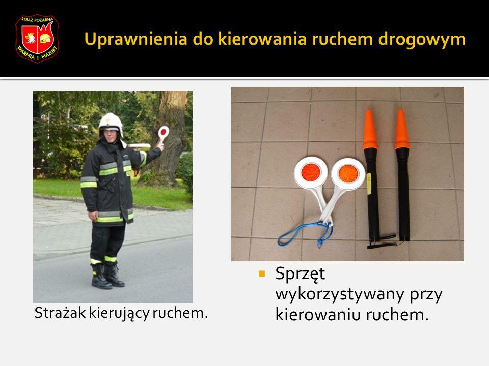 Strażacy podczas inspekcji.