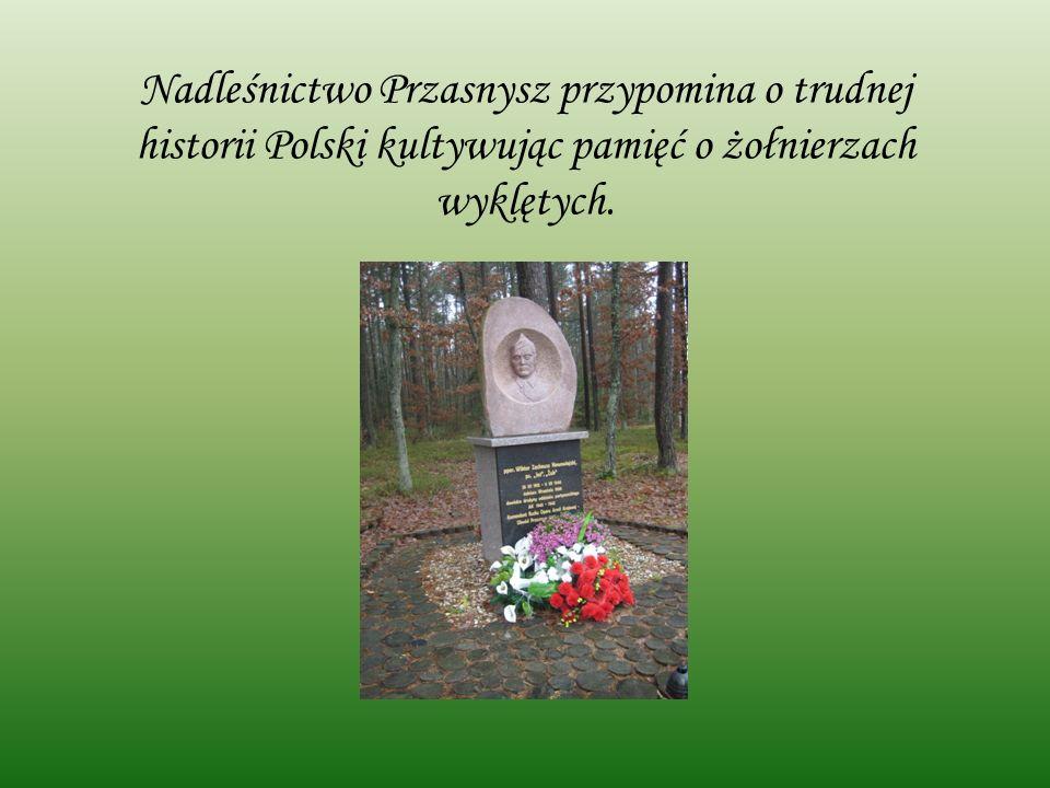 Nadleśnictwo Przasnysz przypomina o trudnej historii Polski kultywując pamięć o żołnierzach wyklętych.