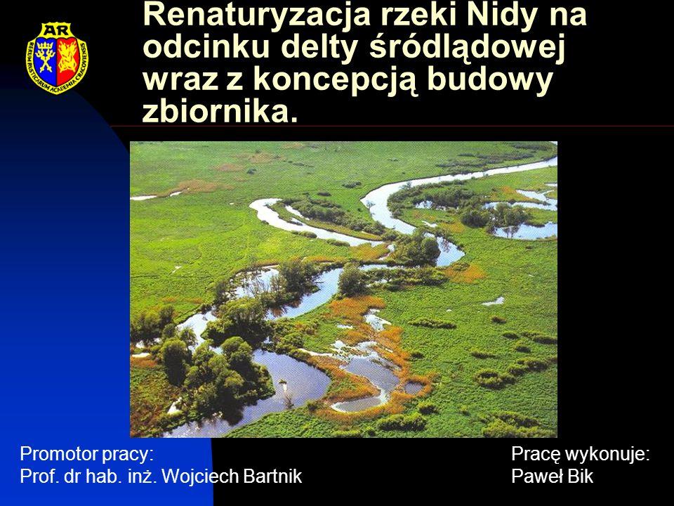 Nida – trasa istniejąca Renaturyzacja Koncepcja odtworzenia starorzeczy i meandrów na rzece Nidzie.