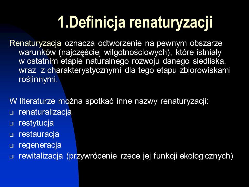 Rodzaje działań i przedsięwzięć renaturyzacyjnych rzeki Nidy na podstawie opracowania Kerna (Żelazo J., Popek Z.