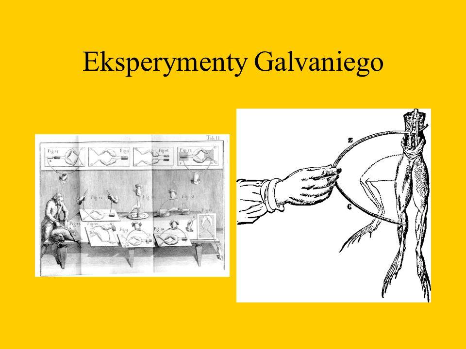 Eksperymenty Galvaniego