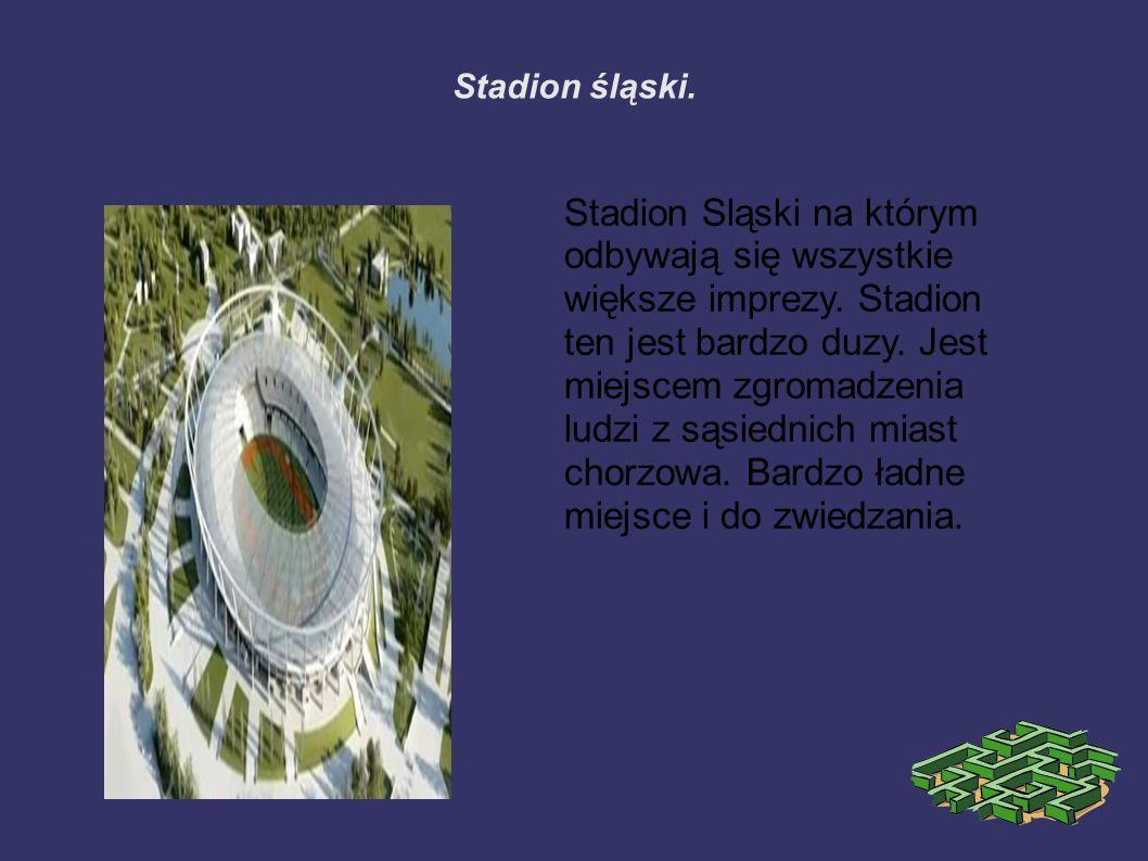 Stadion śląski. Stadion Sląski na którym odbywają się wszystkie większe imprezy.