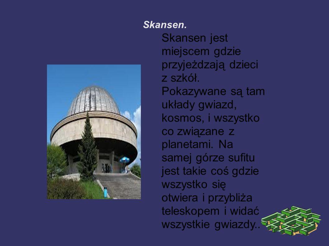 Skansen. Skansen jest miejscem gdzie przyjeżdzają dzieci z szkół.