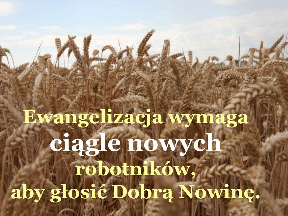 Ewangelizacja wymaga ciągle nowych robotników, aby głosić Dobrą Nowinę.