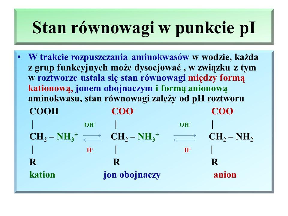 Jon obojnaczy – bipolarny Jon bipolarny (obojnaczy) zawiera w swojej strukturze fragment kationowy i fragment anionowy (dwie grupy o przeciwstawnych w