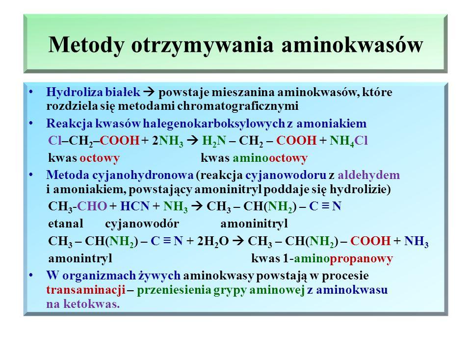 Stan równowagi w punkcie pI W trakcie rozpuszczania aminokwasów w wodzie, każda z grup funkcyjnych może dysocjować, w związku z tym w roztworze ustala