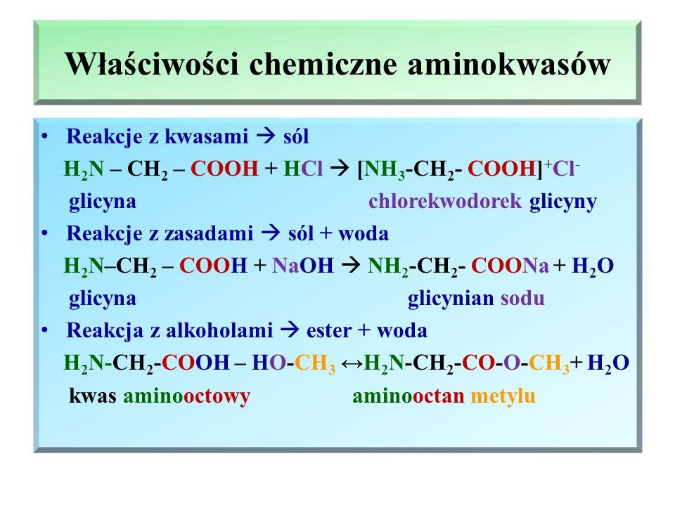 Metody otrzymywania aminokwasów Hydroliza białek  powstaje mieszanina aminokwasów, które rozdziela się metodami chromatograficznymi Reakcja kwasów ha