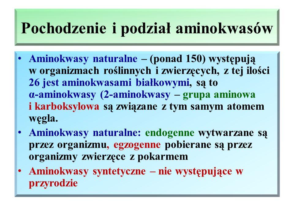 Pochodzenie i podział aminokwasów Aminokwasy naturalne – (ponad 150) występują w organizmach roślinnych i zwierzęcych, z tej ilości 26 jest aminokwasami białkowymi, są to α-aminokwasy (2-aminokwasy – grupa aminowa i karboksylowa są związane z tym samym atomem węgla.