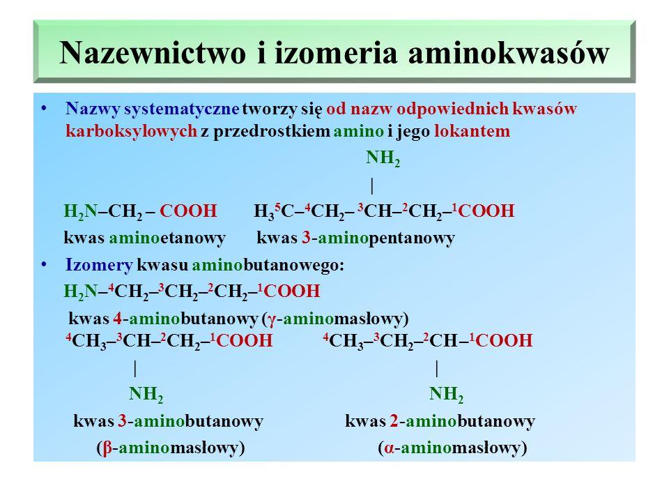 Nazewnictwo i izomeria aminokwasów Nazwy systematyczne tworzy się od nazw odpowiednich kwasów karboksylowych z przedrostkiem amino i jego lokantem NH 2 | H 2 N–CH 2 – COOH H 3 5 C– 4 CH 2 – 3 CH– 2 CH 2 – 1 COOH kwas aminoetanowy kwas 3-aminopentanowy Izomery kwasu aminobutanowego: H 2 N– 4 CH 2 – 3 CH 2 – 2 CH 2 – 1 COOH kwas 4-aminobutanowy (γ-aminomasłowy) 4 CH 3 – 3 CH– 2 CH 2 – 1 COOH 4 CH 3 – 3 CH 2 – 2 CH – 1 COOH | | NH 2 NH 2 kwas 3-aminobutanowy kwas 2-aminobutanowy (β-aminomasłowy) (α-aminomasłowy)
