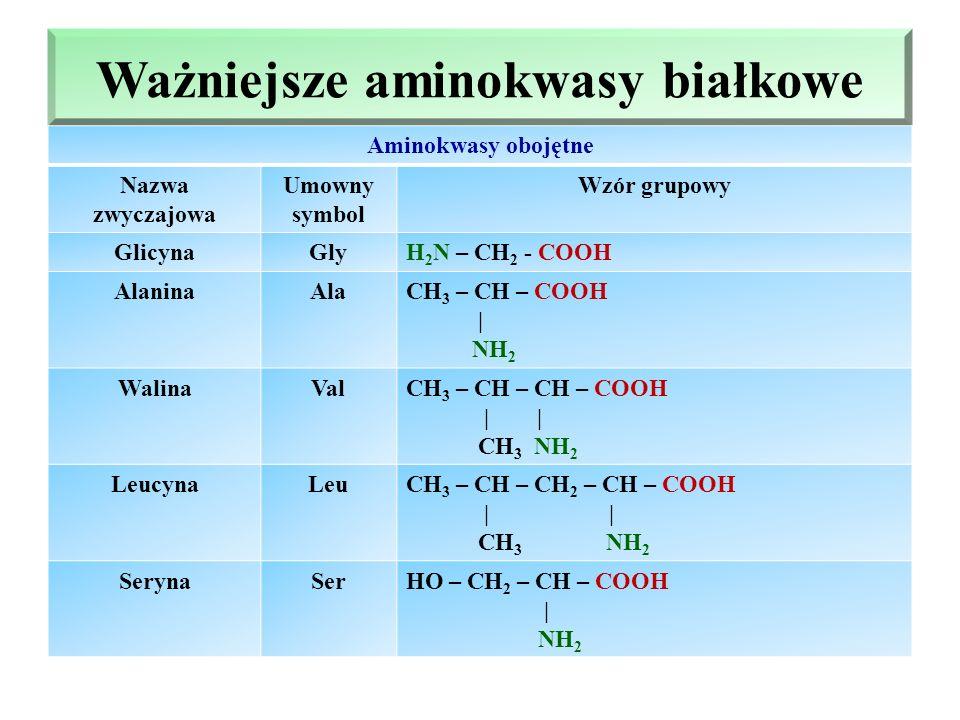 Ważniejsze aminokwasy białkowe Aminokwasy obojętne Nazwa zwyczajowa Umowny symbol Wzór grupowy GlicynaGlyH 2 N – CH 2 - COOH AlaninaAlaCH 3 – CH – COOH | NH 2 WalinaValCH 3 – CH – CH – COOH | | CH 3 NH 2 LeucynaLeuCH 3 – CH – CH 2 – CH – COOH | | CH 3 NH 2 SerynaSerHO – CH 2 – CH – COOH | NH 2