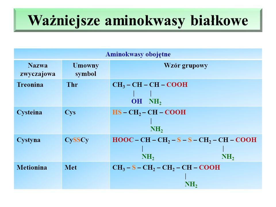 Ważniejsze aminokwasy białkowe Aminokwasy obojętne Nazwa zwyczajowa Umowny symbol Wzór grupowy Treonina ThrCH 3 – CH – CH – COOH | | OH NH 2 CysteinaCysHS – CH 2 – CH – COOH | NH 2 CystynaCySSCyHOOC – CH – CH 2 – S – S – CH 2 – CH – COOH | | NH 2 NH 2 MetioninaMetCH 3 – S – CH 2 – CH 2 – CH – COOH | NH 2