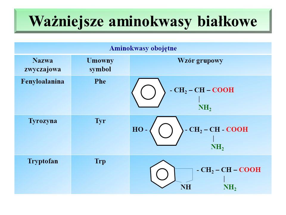 Ważniejsze aminokwasy białkowe Aminokwasy obojętne Nazwa zwyczajowa Umowny symbol Wzór grupowy FenyloalaninaPhe - CH 2 – CH – COOH | NH 2 TyrozynaTyr HO - - CH 2 – CH - COOH | NH 2 TryptofanTrp - CH 2 – CH – COOH | NH NH 2