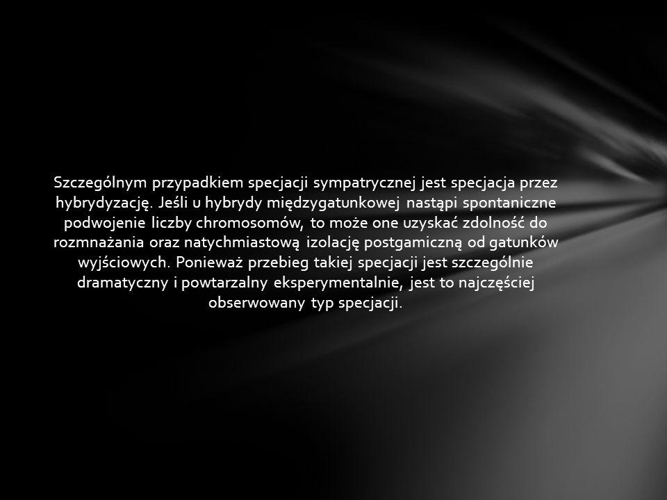 Szczególnym przypadkiem specjacji sympatrycznej jest specjacja przez hybrydyzację. Jeśli u hybrydy międzygatunkowej nastąpi spontaniczne podwojenie li