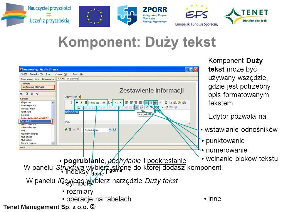 Komponent: Duży tekst Tenet Management Sp. z o.o.