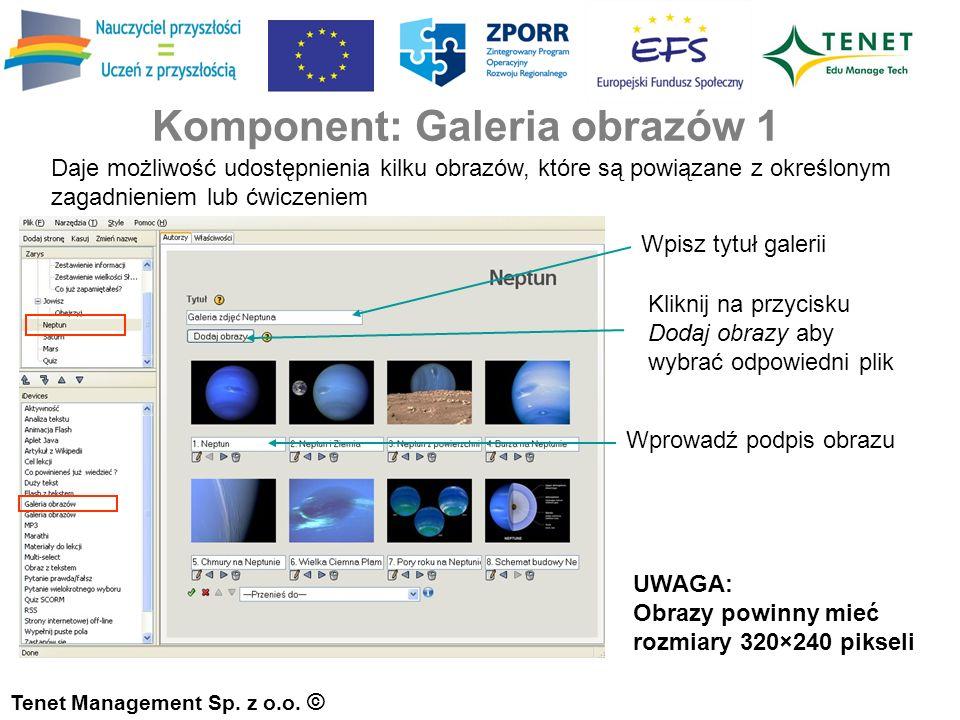 Komponent: Galeria obrazów 1 Tenet Management Sp. z o.o.