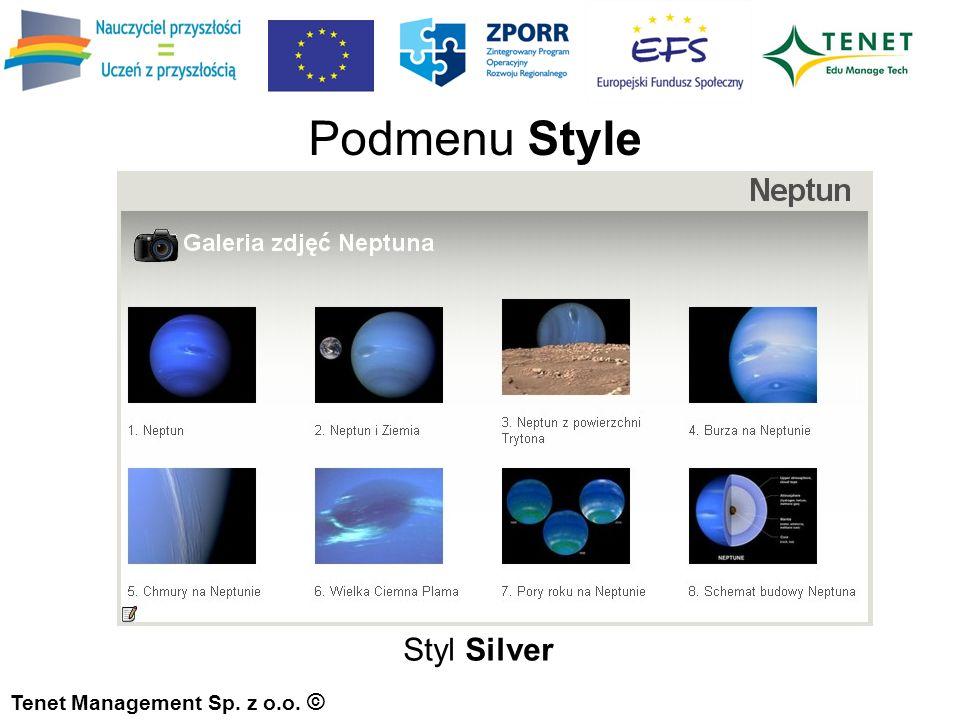 Tenet Management Sp. z o.o. © Styl Silver Podmenu Style