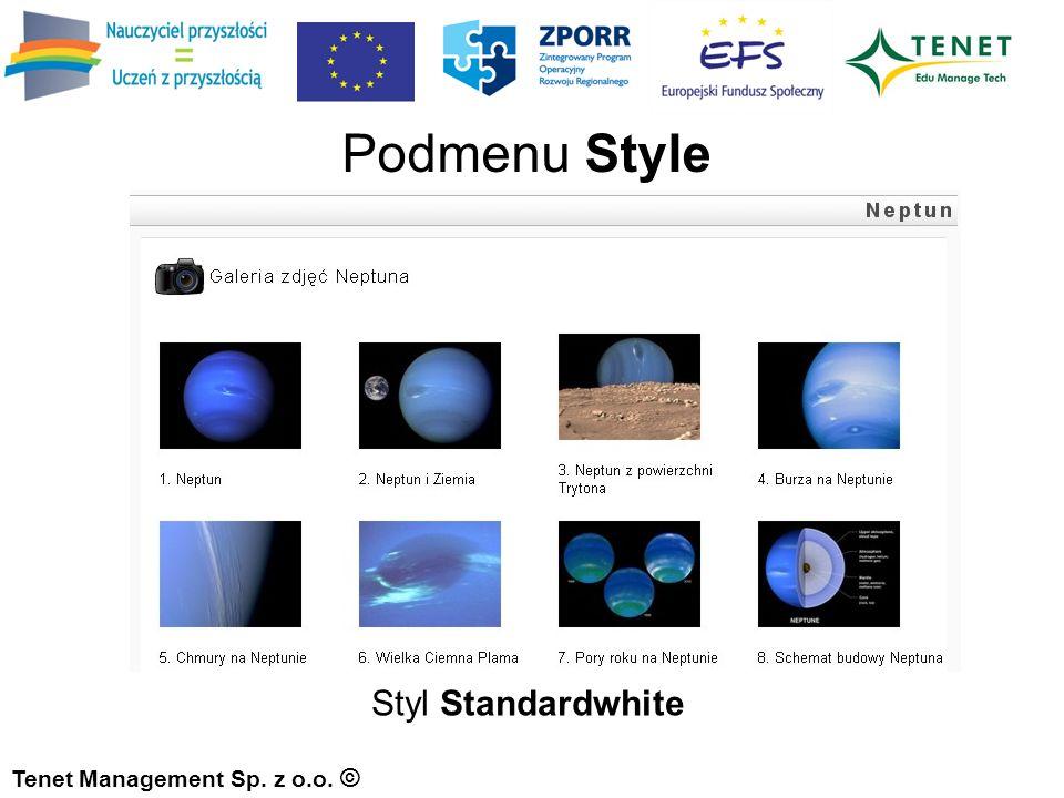 Tenet Management Sp. z o.o. © Podmenu Style Styl Standardwhite
