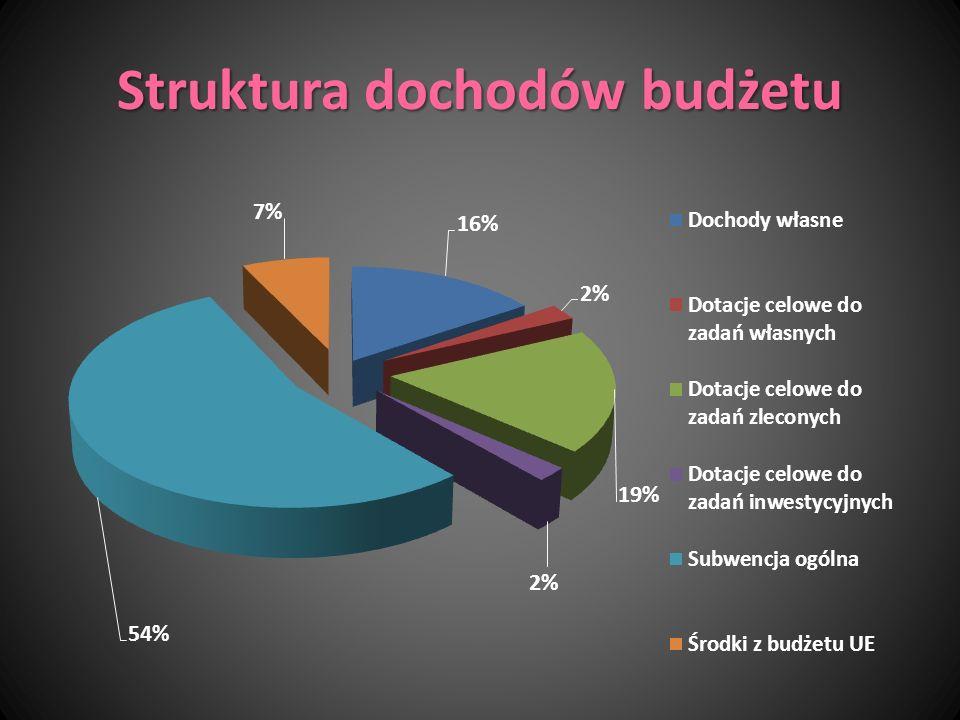 Struktura dochodów budżetu