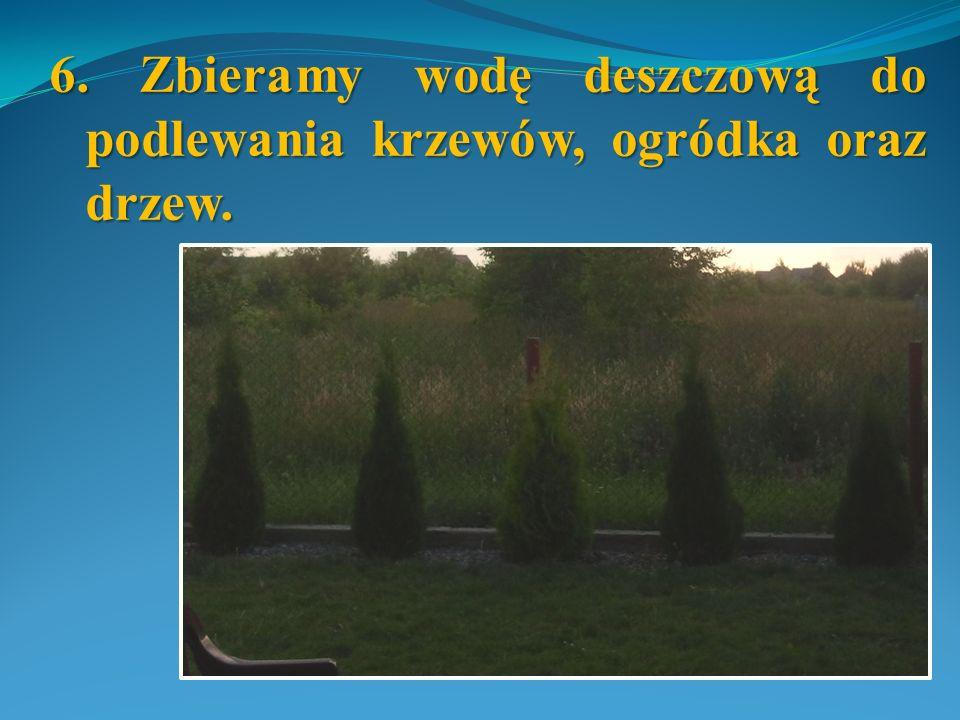 6. Zbieramy wodę deszczową do podlewania krzewów, ogródka oraz drzew.