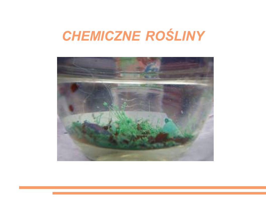 CHEMICZNE ROŚLINY