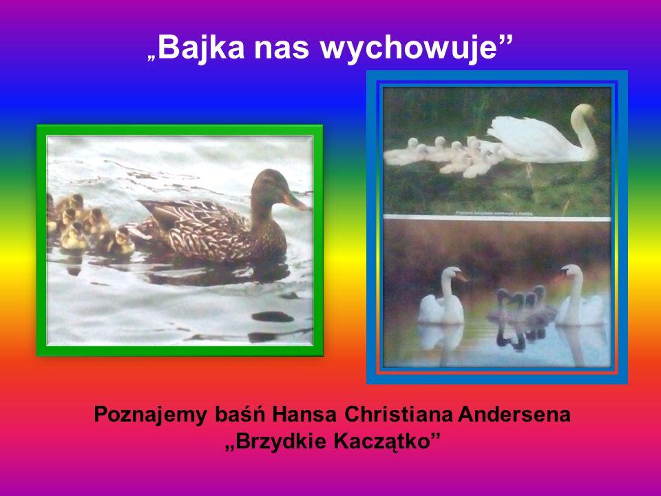 """"""" Bajka nas wychowuje"""" Poznajemy baśń Hansa Christiana Andersena """"Brzydkie Kaczątko"""""""