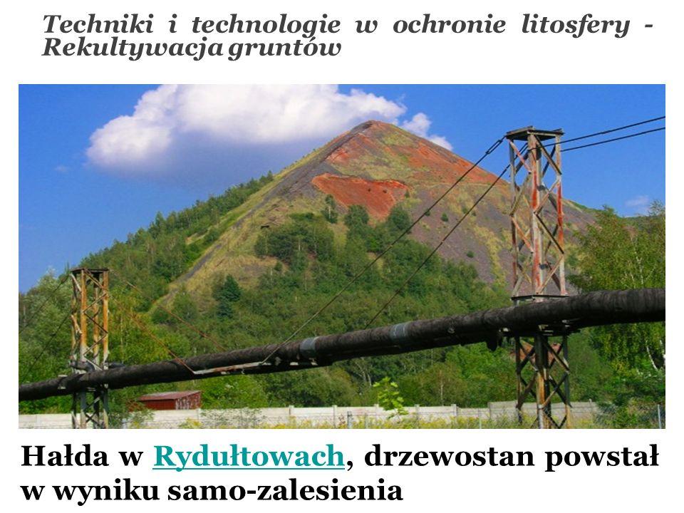 Hałda w Rydułtowach, drzewostan powstał w wyniku samo-zalesieniaRydułtowach Techniki i technologie w ochronie litosfery - Rekultywacja gruntów